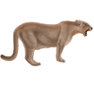 Puma ##STADE## - coat 2